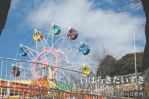 かみね遊園地<br>かみね動物園と併設され、親子連れで賑わいます。