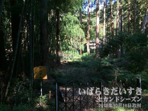 天竜院〔茨城県常陸太田市折橋町〕<br>阿武隈山地山中にひっそりと存在する天竜院。来るものを拒むような威圧感を感じます。