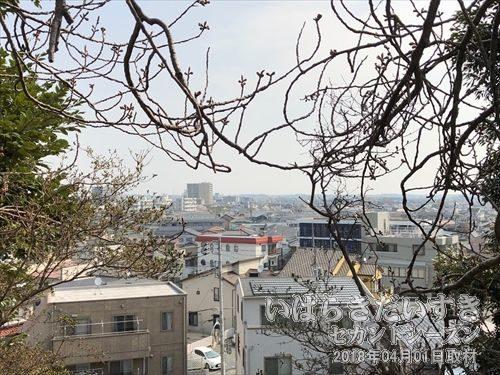 吉田神社の高台から見下ろす、水戸市街地<br>水戸駅より北側の高台エリアは武家の上市(かみいち)と称し、水戸駅から南側のこちらのゾーンを商家の町、下市(しもいち)と呼んでいました。