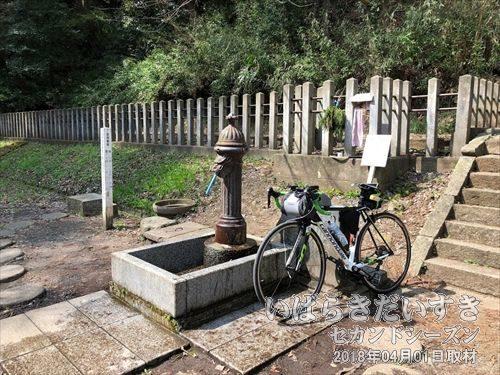 復元された竜頭水栓りゅうずすいせん)<br>明治時代に使われていた竜頭水栓が復元しようされています。この日も、周辺の市民が水を汲みに訪れていました。