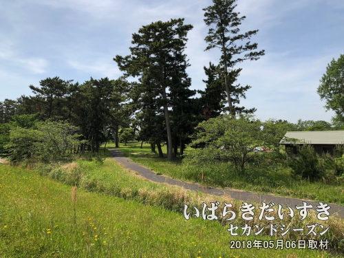和田入江 / 和田公園