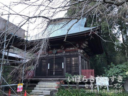 小松寺 観音堂