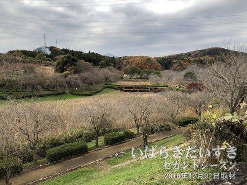 龍神山 / 常陸風土記の丘として一部整備されています