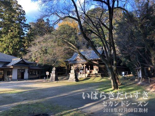 磯部稲村神社<br>古くから紀貫之らがこの地を訪れ歌や句を詠んだほか、今風のパワースポットの展示など、新旧織り交ぜた魅せ方をしており、手入れの良く行き届いた神社です。