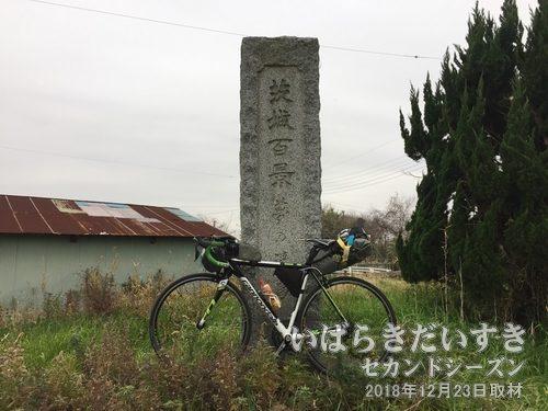 茨城百景_夢の浮島
