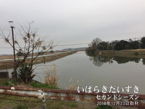 上馬渡(かみまわたし)地区の湖岸跡<br>古渡の上馬渡湖岸と浮島とのあいだは干拓され、川が流されました。写真右手か上馬渡地区。川を挟んで左手が干拓地。