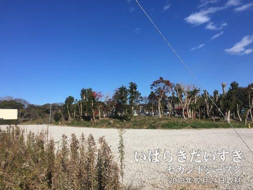 花ヶ崎城跡の風景〔茨城県神栖市萩原〕<br>軽野サンドスキーと呼ばれる軽野地区にて散策しましたが、サンドスキー場の面影は確認できませんでした。