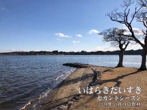 親沢の鼻<br>かつて「一つ葉の松」がありました。現在は徳川光圀の詠んだ「親沢の一本松」の句碑があります。
