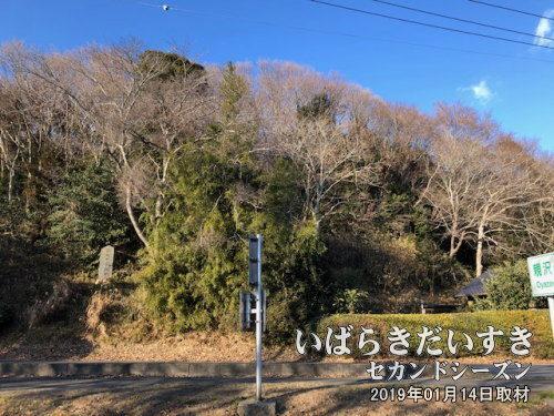 石崎城址<br>小高い山の上は住宅が建ち並び、城址としての面影はありません。