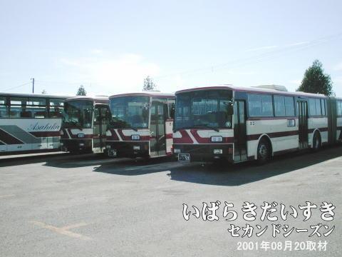北海道旭川市にある旭川電気軌道にて、科学万博-つくば'85で利用された連節バスが現在でも健在です。しか しここ数年、がたが出始めており、廃車になる可能性も考えられるようです。万博マニア(バスマニア)は、早めの 訪問が必要かと思われます。
