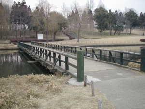 ぴょんぴょん橋これも科学万博 つくば'85 当時のものを利用していると思われます。