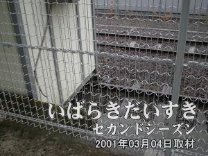 さらに土浦駅ホームを水戸方面に進むと、まだレールが残されているのが見て取れます。