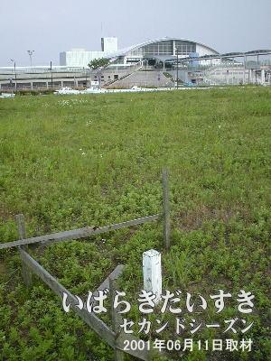 常磐線 ひたち野うしく駅 西口2001年06月11撮影