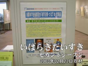 【資料展告知ポスター】<br>会場の柱に貼られた、今回の資料展の告知ポスター。持ち帰り用に、白黒印刷されたチラシが別途用意されています。
