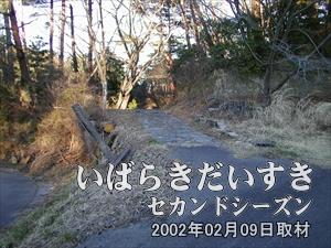 【展望台への道】<br>天望荘から続く展望台への道は荒れ放題でした。