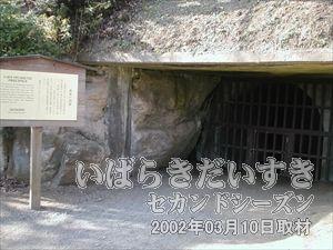 【南崖の洞窟】<br>園内をくまなく歩くと、こういった洞窟を見つけることができます。