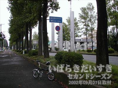 【筑波研究学園都市のモニュメント】<br>学園都市エリアに入る時に見かける縦長の銀色のモニュメント。これを見ると、「つくばに来たな~」って感じます。