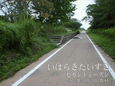 【常陸小田駅 ホーム】ここもホームが残されているので、駅があったことが容易に確認できます。