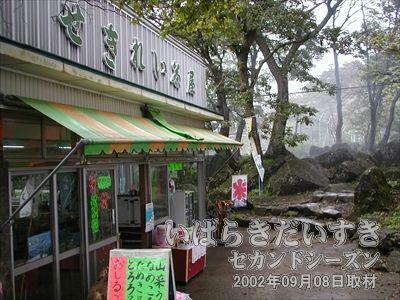 【せきれい茶屋】<br>女体山までの道中には、お土産屋さん(お茶屋さん)があるので、休憩もできます(^^)。