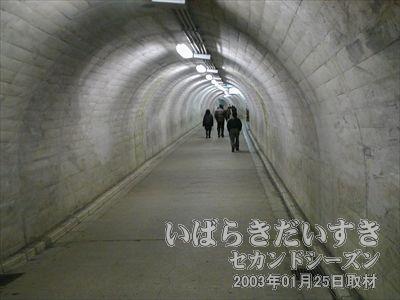 【袋田の滝までトンネルを歩く】<br>トンネルはしっかりした作りで、水漏れも見受けられません。