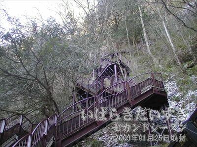 【月居山への階段】<br>吊り橋を渡ると階段があります。階段がしっかりしているので、この調子で月居山の頂上までいけると思いきや・・・。