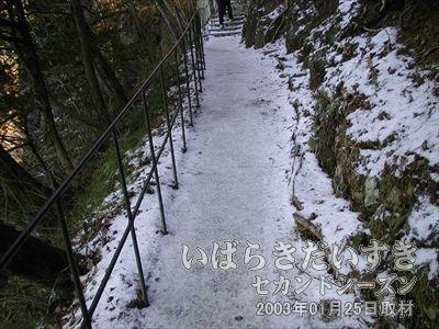 【氷の張った道】<br>道は凍りつき、左の柵もすき間が大きく、歩くのに注意が必要です。