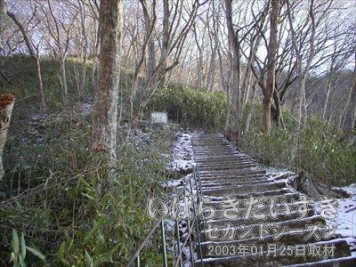 【急勾配の階段が続く】<br>階段にはなっていますが、急勾配。山登りをしている感覚と変わりません。