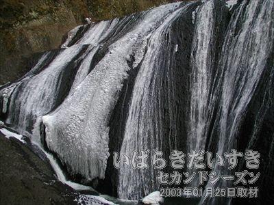 【袋田の滝 下部】<br>滝の下のほうは、一部凍りついています。ちべたそう~(ぶるぶる)。