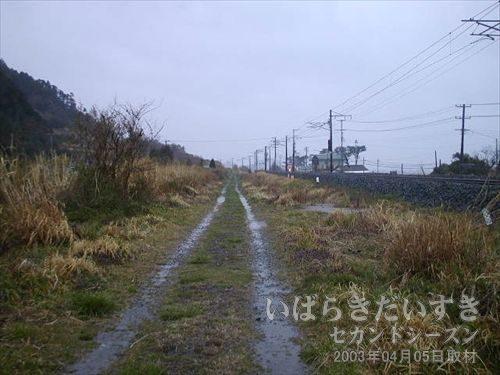 保守用道路を歩く<br>写真右手の高いところが、常磐線線路。こちらは保守用道路。