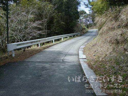 山道を発見<br>こちらのほうに、金山トンネルがあるような気がしました。