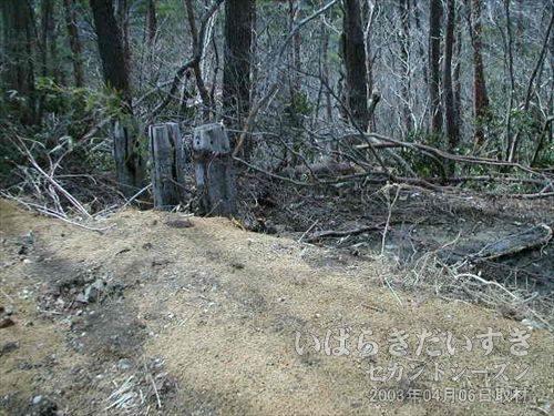 盛り土の向こうに枕木<br>盛り土で入れないようになっています。が、枕木と言い、これは怪しい。。。