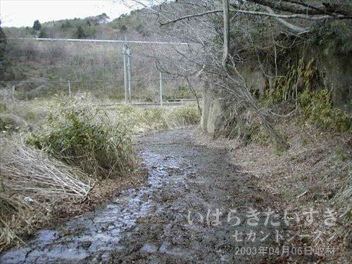 ぬかるんだ下り道<br>昨日の雨で地面はぐちゃぐちゃ。右手の崖が崩れてもおかしくありません。。
