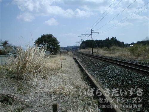 保守用の道路<br>電車が来ないのを確認し、トンネルの方面に歩いていきます。