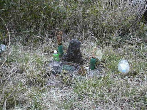 金山トンネル 線路脇にはお墓?<br>お花が添えられ、ペットボトルのお茶や、燃え尽きた線香もあります。