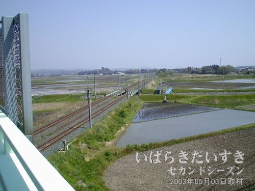 草野跨線橋から撮影<br>常磐線草野駅から数分の場所に、常磐線をまたぐ草野跨線橋。常磐線を北に眺める。