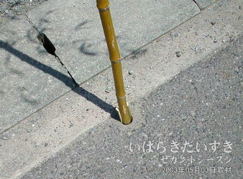 道路に竹を挿す穴が<br>竹ざおを挿す為の穴が公道に設けられているなんて、都心部では考えられないです。