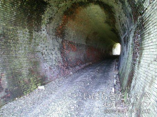 トンネル内のレールは無い<br>レールは撤去されています。現行線路の保守道路として車が通る事もあるようです。