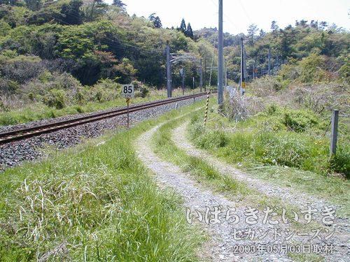 鞍掛山トンネルへの保守道路<br>鞍掛山トンネルへアクセスできる保守道路。