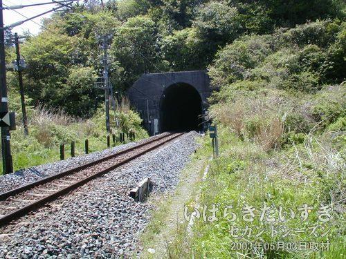 現行の鞍掛山トンネル(久ノ浜駅方面/北口)<br>向山トンネルと鞍掛山トンネルは、新旧のトンネル配置がクロスしています。