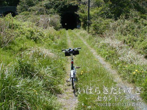 旧トンネル 鞍掛山トンネル〔久ノ浜駅方面/北口〕<br>トンネル内がまっすぐなので、遠くに出口の光が見えます。