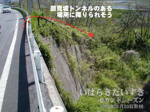 県道沿いから下に降りられる封鎖された階段<br>県道395号沿いに原見坂トンネルの場所に降りられそうな階段があります。
