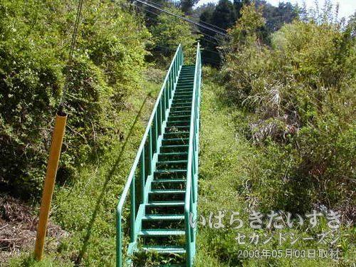 常磐線 保守用の階段<br>ここを上れば原見坂トンネルにアクセスできるかも!?と思い、上がってみました。