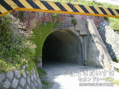 レンガ調のアーチトンネル<br>たいへん高さの低いアーチを見つけました。常磐線初期の頃からある物のようです。
