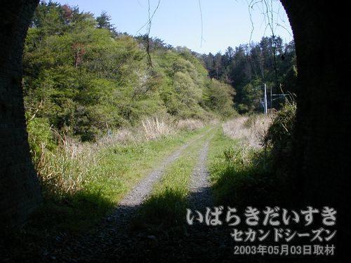 天神沢トンネルを通過<br>もう少し先に、大沢トンネルがあるはずです。