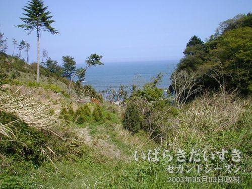海が見えます<br>この辺りのトンネルは視界が良くなかったのですが、ここに来て、海が見ます。
