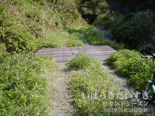 枕木の橋<br>大沢トンネルに行く途中、枕木で作られた橋がありました。たたいて安全を確かめてから渡ります。