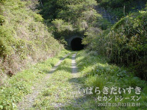 大沢トンネルが見えてきた<br>辺りが山に包まれるようにして、トンネルがあります。