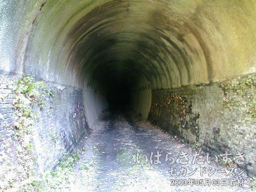 トンネルの出口が見えない<br>トンネルは226m近くの長い距離があります。出口の光が見えないと言うのは怖い感じです。