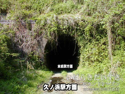 大沢トンネル〔久ノ浜駅方面〕<br>草木に包まれてしまった、ジャングルなトンネルです。
