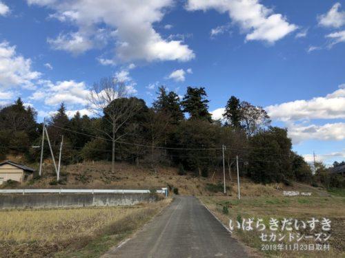 有賀神社の東側に山(古墳)が見える。